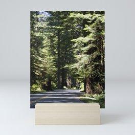 Humboldt State Park Road Mini Art Print