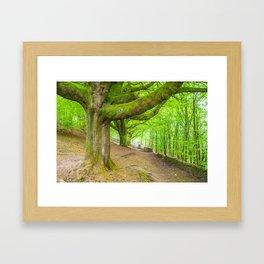 Kendal, UK Framed Art Print