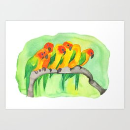 Parrots In A Row Art Print