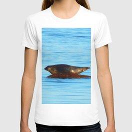 Wet Seal on a Rock T-shirt