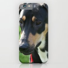 Doberman iPhone 6s Slim Case