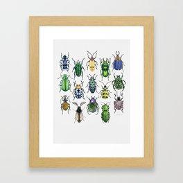 Colourful Bugs Framed Art Print
