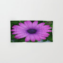 Purple African Daisy with Raindrops Hand & Bath Towel