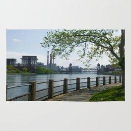 Queens View Roosevelt Rug
