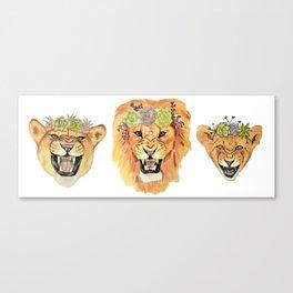 Lion Family (Horizontal) Canvas Print