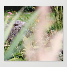 summer passing Canvas Print