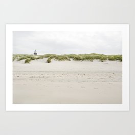 Nordic beach Art Print