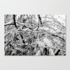 Frozen II Canvas Print