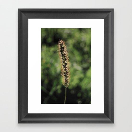 Fuzzy Framed Art Print