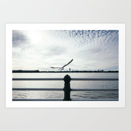 A Moment of Freedom Art Print