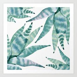 Desert Succulents Art Print