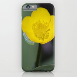 Inchworm Buttercup iPhone Case