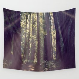 Redwoods Hike Wall Tapestry