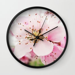 Pink Plum Blossoms Wall Clock