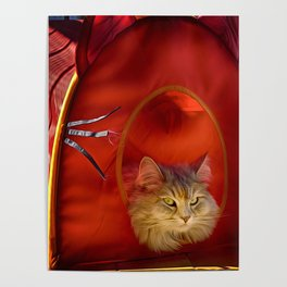 Cleopatra in her little cat house Poster