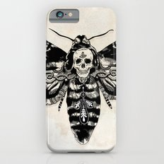 Death's-head Hawkmoth iPhone 6s Slim Case
