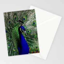 Proud Peacock Stationery Cards