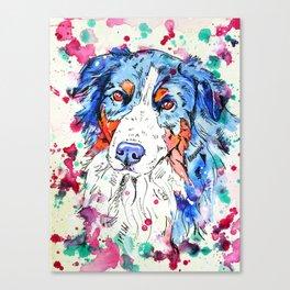 Tri Australian Shepherd Canvas Print