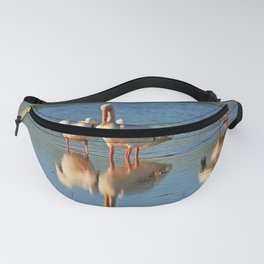 Jive Dancer Fanny Pack