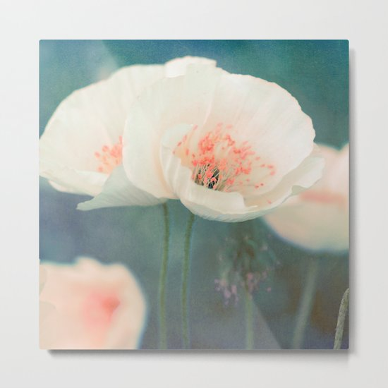 White poppies Metal Print