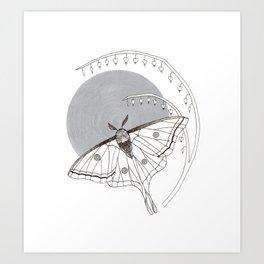 Moon Moth & Bleeding Heart Art Print