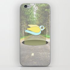 let me fly iPhone & iPod Skin