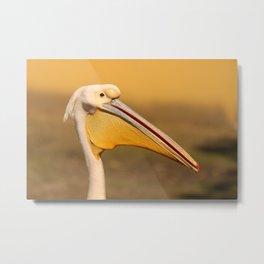Pelican beak, yellow bird art Metal Print