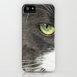 Angry cat looking at camera iPhone Case