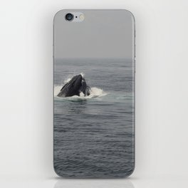 Whale Eating iPhone Skin