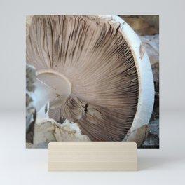 TEXTURES -- Mushroom Uprooted Mini Art Print