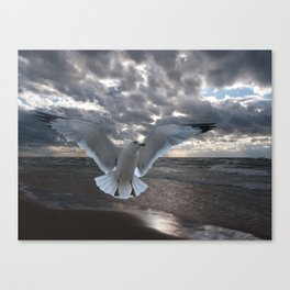 Evening Landing Canvas Print