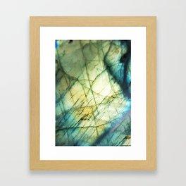 lab glory Framed Art Print