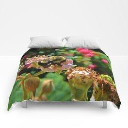 blackberry buzz Comforters