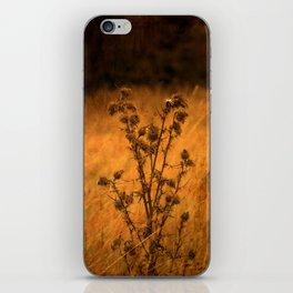 Vintage Fields iPhone Skin