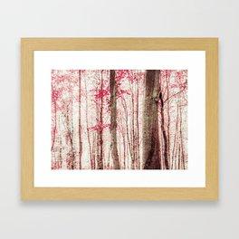 Pink and Brown Fantasy Forest Framed Art Print