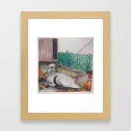Buckbeak rides again Framed Art Print