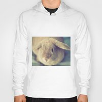 bunny Hoodies featuring Bunny by Jessica Torres Photography