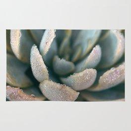 Autumn Succulent #2 Rug