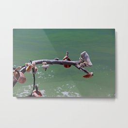Beachtime on Boca Metal Print