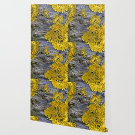 Tree Bark Pattern # 3 with yellow lichen Wallpaper