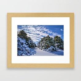 Pine Grove Framed Art Print