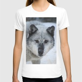 Lone wolf roams the Canadian Rockies T-shirt