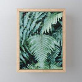 Green Fern Framed Mini Art Print