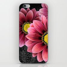 zany flowers iPhone & iPod Skin