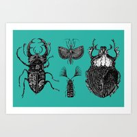 insects Art Prints featuring Insects by Ejaculesc