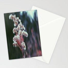 Fuzz Stationery Cards