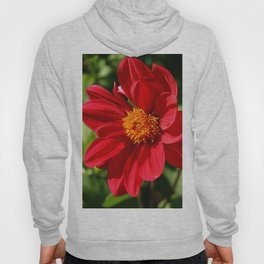 Red Is Beautiful Hoody