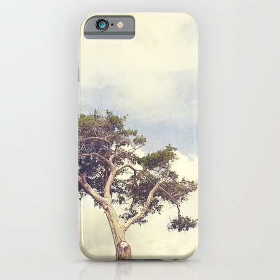 Tree and Sky iPhone & iPod Case
