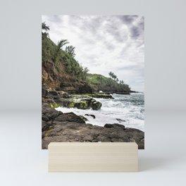 On the Rocks at Secret Beach Mini Art Print
