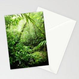 Warm Glow Rainforest Creek Stationery Cards